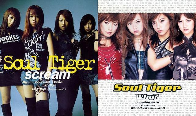 Soul Tiger