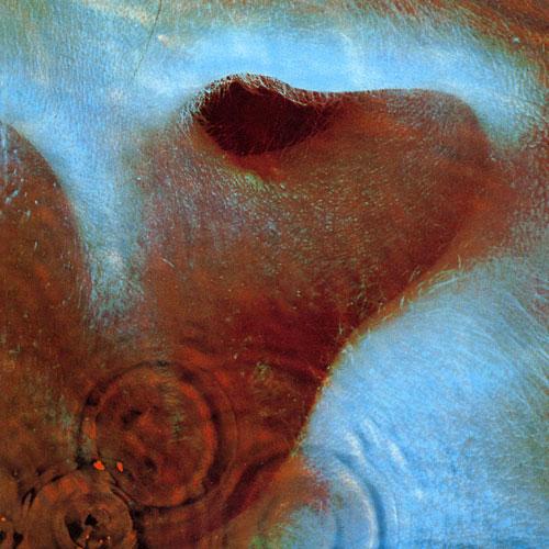 Pink Floyd/Meddle